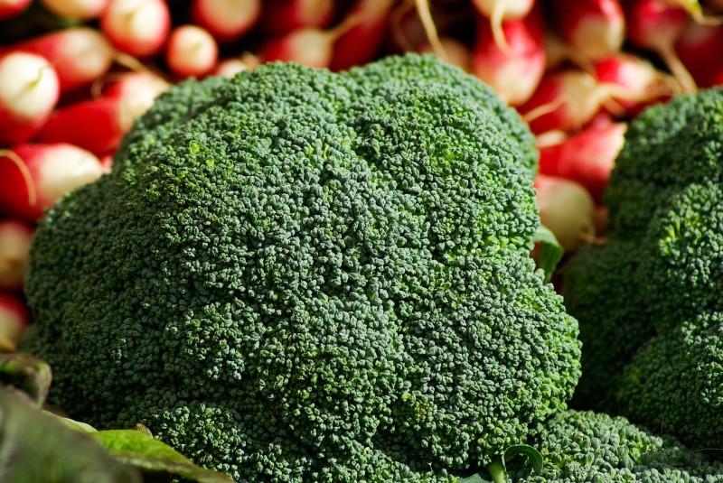 eiweißreiche lebensmittel gesunde ernährung abnehmen ernährungsberatung basische ernährung brokkoli