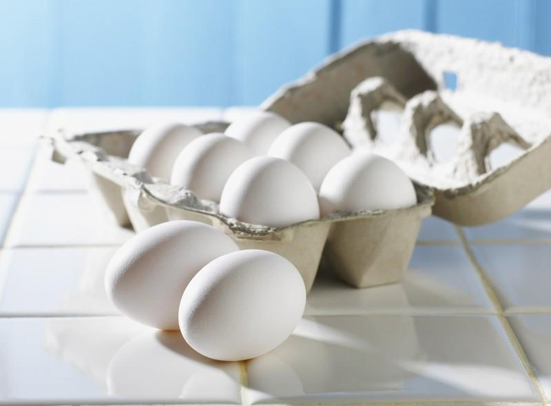 eiweißreiche lebensmittel eiweißzufuhr eiweiß eiweißreiche lebensmittelgesunde ernährung abnehmen ernährungsberatung basische ernährung eier