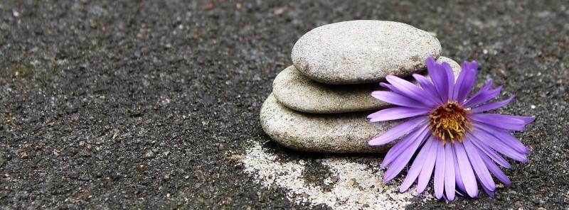 yoga tuebingen yoga in tuebingen vinyasa yoga tuebingen tuebingen yoga yogakurs tuebingen