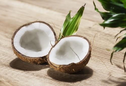 kokosnusshälften grünr pflanze